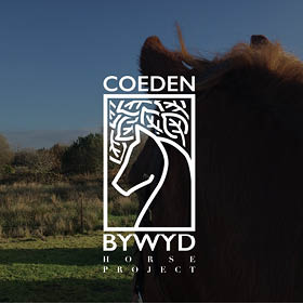Coeden Bywyd Horse Project